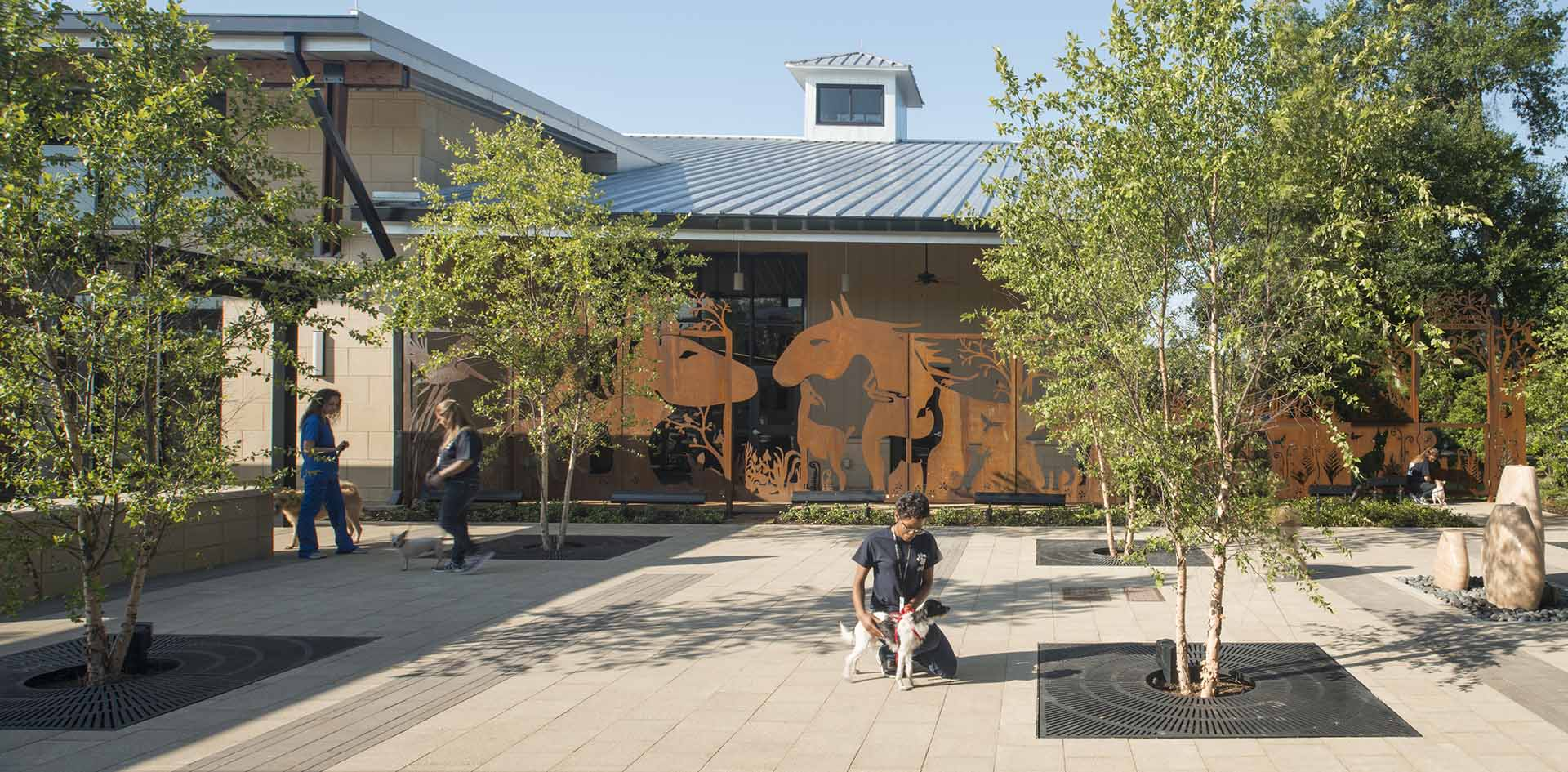 10.3  HSPCA state of the art animal shelter and wildlife center by Jackson & Ryan Architects
