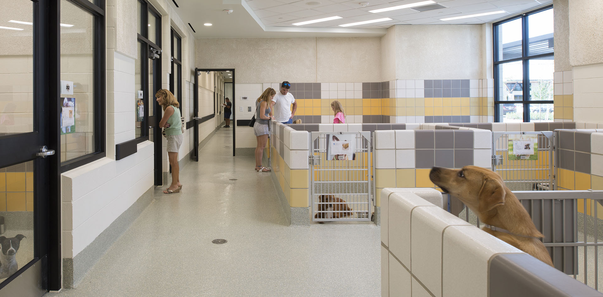 9 HSPCA state of the art animal shelter and wildlife center by Jackson & Ryan Architects
