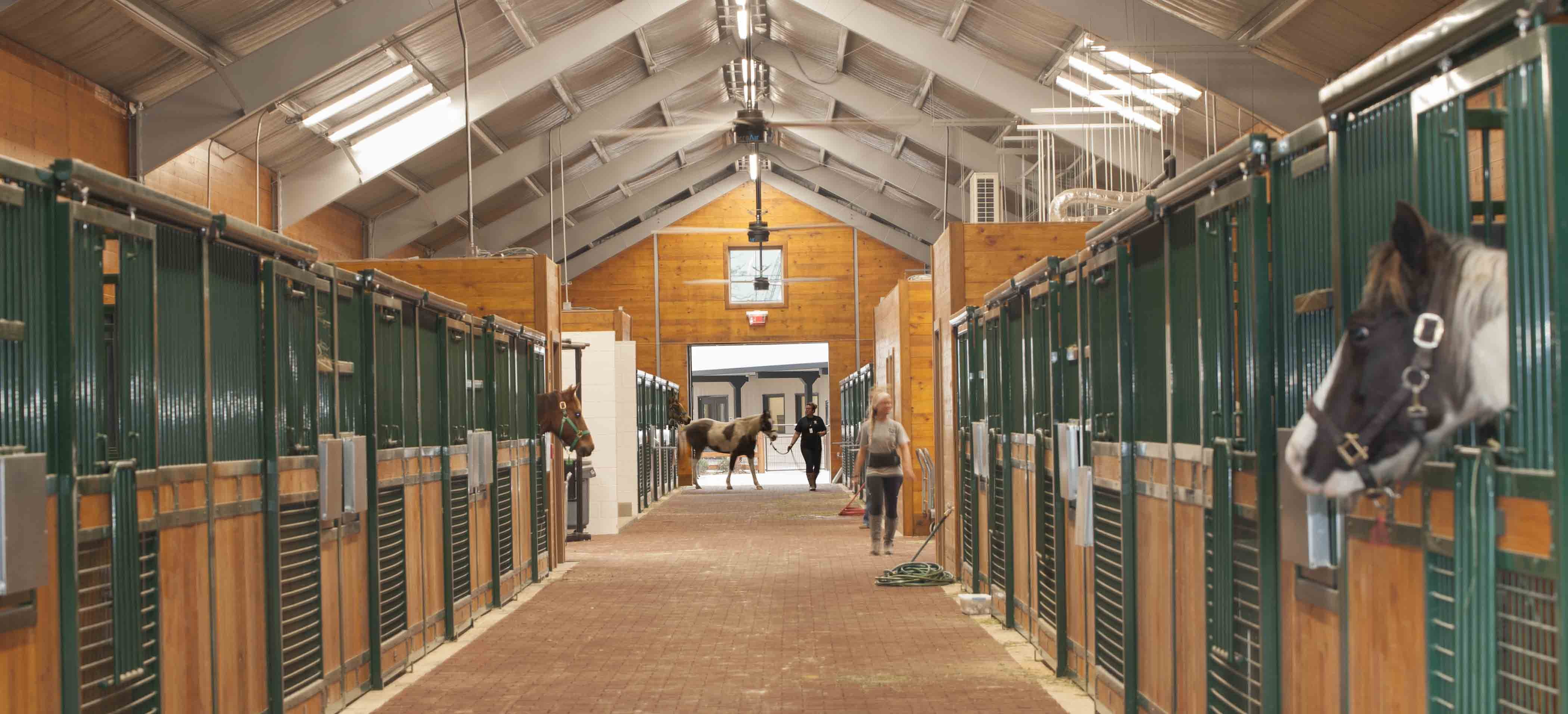 Jackson & Ryan Architects Houston SPCA Campus for All Animals 12 Equine and Farm Animals Center